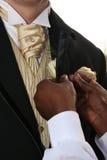 Appuntare è aumentato sul vestito Fotografia Stock Libera da Diritti