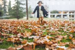 Appy little girl playing with autumn leaves in the park Royalty Free Stock Photo