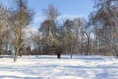 Après chutes de neige photographie stock