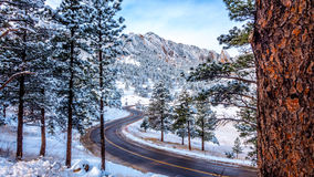 Après des chutes de neige d'un Colorado Photos stock