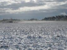 Après la neige vient la brume images stock