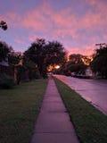 Après la pluie Photo stock