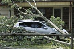 Après la tempête Image libre de droits