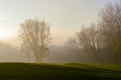 Après-midi brumeux d'automne aux Pays-Bas Photo stock