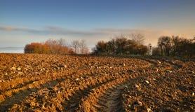 Après-midi d'automne sur le champ photo libre de droits