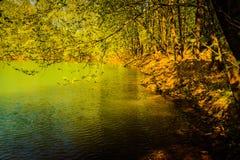 Après-midi de Lakeside Image stock