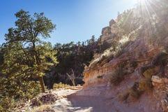 Après-midi sur la traînée lumineuse d'ange dans Grand Canyon Photographie stock