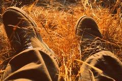 Après-midi tranquille sur le foin Photographie stock