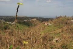 Après ouragan Maria Rincon Puerto Rico September 2017 photographie stock