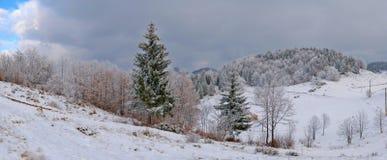 Après première neige Photos stock