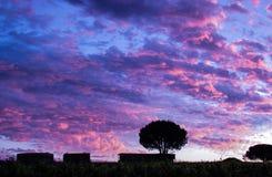 Après un grand feu, les nuages ont tourné le pourpre Photo stock