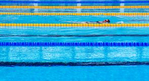 Female swimmer in Olympic standard swimming pool royalty free stock photo