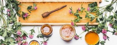 Apra i barattoli del miele con il merlo acquaiolo, la struttura del favo ed i fiori selvaggi su fondo bianco, vista superiore Immagini Stock Libere da Diritti