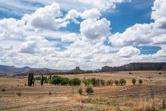 Apra i campi asciutti con gli alberi Fotografia Stock