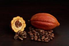 Apra il baccello del cacao Immagine Stock Libera da Diritti