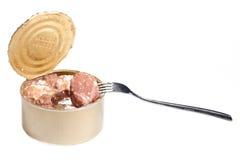 Apra il barattolo di latta con carne stufata senza contrassegno Fotografia Stock Libera da Diritti
