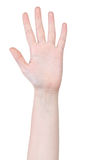 Apra il gesto di mano di cinque dita Fotografie Stock Libere da Diritti