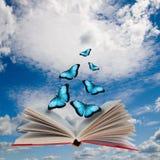 Apra il libro e le farfalle Immagini Stock Libere da Diritti