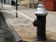 Apra l'idrante antincendio Fotografie Stock Libere da Diritti