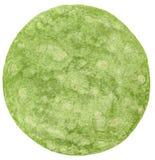 Apra l'involucro piano degli spinaci isolato sopra bianco fotografia stock
