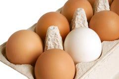 Apra la casella con le uova Fotografie Stock