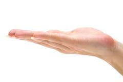 Apra la mano Immagine Stock