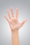 Apra la mano della donna o il numero cinque Immagine Stock