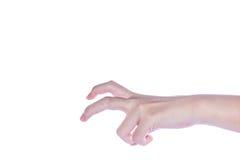 Apra la mano della donna su fondo bianco Fotografie Stock Libere da Diritti