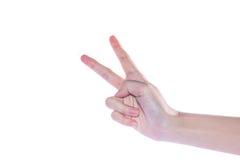 Apra la mano della donna su fondo bianco Fotografie Stock