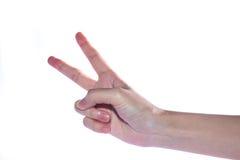Apra la mano della donna su fondo bianco Fotografia Stock Libera da Diritti