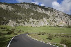 Apra la strada nel parco nazionale di Grazalema Immagine Stock Libera da Diritti
