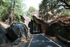 Apra la strada in parco nazionale di Yosemite Fotografia Stock Libera da Diritti
