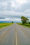 Apra la strada sotto un cielo nuvoloso fra i giacimenti del girasole Immagini Stock Libere da Diritti