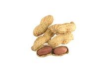 Apra le arachidi Fotografia Stock Libera da Diritti