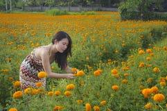A apreciação chinesa asiática nova da mulher do turista relaxado o cheiro da vista e do perfume de um campo de flores bonito ajar Imagem de Stock Royalty Free