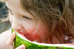 Apreciação da melancia do Close-up Fotografia de Stock