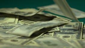 A apreciação da mulher de farfalhar notas de dólar, ganha ou herda o close up grande do importe vídeos de arquivo