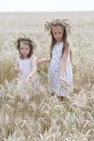 Apreciando a natureza Estada de duas meninas no campo de trigo dourado fotos de stock royalty free