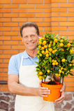 Apreciando o seu trabalho com plantas Imagem de Stock