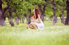 Apreciando o verão na floresta fotografia de stock royalty free