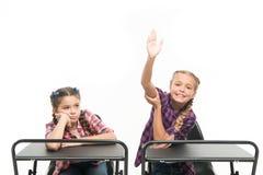 Aprecie o processo de estudo Os colegas dos estudantes sentam a mesa De volta ? escola Conceito da escola privada Escola prim?ria foto de stock royalty free