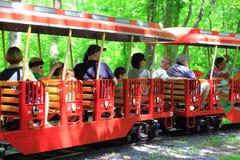 Aprecie o trem diminuto da recreação Imagem de Stock Royalty Free