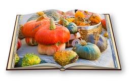 Aprenda cocinar con el libro de cocina de las calabazas - 3D rinden la imagen o del concepto Fotografía de archivo libre de regalías