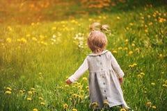 aprende caminar el verano soleado foto de archivo