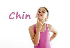 Aprendiendo las partes del cuerpo enseñan la tarjeta de la muchacha que señala en su barbilla en el fondo blanco Fotografía de archivo libre de regalías