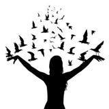 Aprendizagem voar o conceito com as silhuetas da mulher e dos pássaros Imagens de Stock Royalty Free