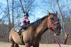 Aprendizaje montar un caballo Foto de archivo