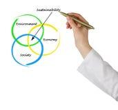 Apresentação do diagrama da sustentabilidade Fotos de Stock