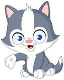 Apresentação do gatinho ilustração stock