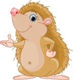 Apresentação do Hedgehog Foto de Stock